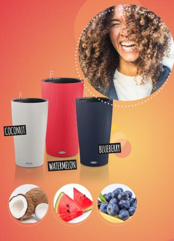 Angebot LECHUZA Stores CILINDRO Sonderfarben