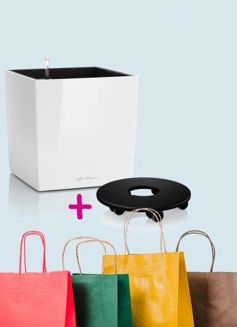 Angebot Lechuza Stores Cube Set 032019